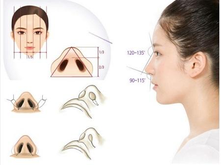 Mô hình giải đáp phẫu thuật cắt cánh mũi ở đâu đẹp