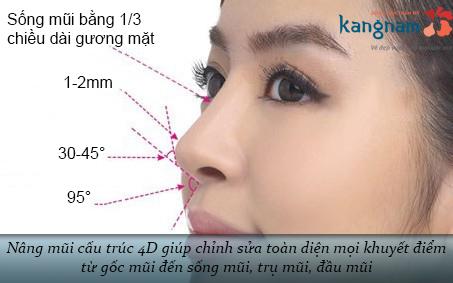 nâng mũi cấu trúc 4D1